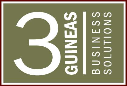 3 Guineas Business Solutions
